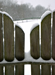 And The Livin' Is Easy (nrg_crisis) Tags: winter snow adirondackchairs depthoffield outdoors irony