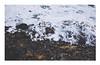 beach (Frag.S) Tags: beach storm bretagne quiberon canon5dmkiii canonphoto canon 50mm 50mmf12 landscape seascape water ocean wildlife wild