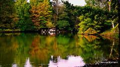 color's symphony  / 080118005 (devadipmen) Tags: landscape atatürkarboretumu belgradforest belgradormanı istanbul landscapephotographer naturepark naturephotographer sarıyer türkiye
