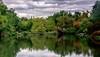 Central Park (López Pablo) Tags: newyork lake tree forrest green cloud manhattan nikon nature urban bridge