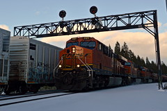 UP QPVS8J-03 (caltrain927) Tags: bnsf railway burlington northern santa fe union pacific railroad mixed freight manifest ge es44c4 et44c4 c4 gevo tier 4 soda springs california ca
