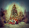 Miracle (Nnoti Nastenkina) Tags: xmas tree forest people couple love lights nature snow farytale decorations light lovely neon holidays cute woods snowing winter kiss