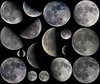 2016 Moons (mariuszwysocki) Tags: collage 2016 moons moon moonlight luna lunar cosmos space universe astronomy nature astrophotography telescope skywatcher night sky canon 700d eos eq3 barlow astro crater processing photoshop lightroom faststone hobby fun planet