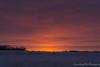 Alberta Sunrise (Snowbirds In Training) Tags: alberta canada crispy frosty outdooradventure wildernessexplorer outdoorlife natureshot naturelove naturephoto treemagic yyc yeg