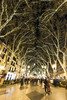 Palma Nocturna 00083 (Sebas Adrover) Tags: balearicislands city mallorca mediterranean spain xmas christmas lights longexposure night palma