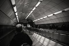Going down the tube...... (Dafydd Penguin) Tags: london underground tube station totenham court road escalator moving staircase public transport train tram raw street shot blackandwhite blackwhite black white bw monochrome mono city urban metro metropolis leica m10 summicron m mount f2 asph 35mm