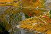Mt. Baker Alpine Lake (DJ Fotographic) Tags: canon 300d 70210 mt baker pacific northwest nature lake alpine
