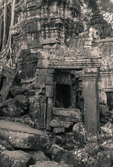 Ankor - Ta Prohm-1-9 (Murugans Eye) Tags: ancient angkor buddha camboia chola indian murugan muruganantham taprohm tree treeonthetemple treeonthewall amazing angkorwat architect architecture asia beauty face facetemple hardlabour hardwork kemp people rock root ruine ruined siemreap stone temple travel vacation
