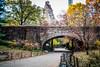 A Sunday Morning in Central Park (Phil Roeder) Tags: newyorkcity manhattan centralpark park leica leicax2 arch bridge path