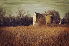 So it Goes (Dave Linscheid) Tags: barn silo decay farm rural country agriculture texture textured butterfield watonwancounty mn minnesota usa fall autumn toolwizphotos