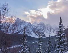 Lake Louise (gri_mountainlakes) Tags: ski winter december mauve neige banff morainelake