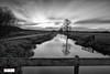 Sunset LE Polder Nienoord Leek Netherlands (Reina Smallenbroek) Tags: reinasmallenbroek blackandwhite zwartwit landschap landscpae nienoordleek polder water tree boom bridge brug le leebigstopper sky wolken lucht clouds