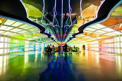Sky's the Limit (Thomas Hawk) Tags: america chicago illinois michaelhayden ohareinternationalairport skysthelimit usa unitedairlines unitedstates unitedstatesofamerica airport neon fav10 fav25 fav50