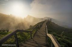 Sunset @ Dalunshan Sightseeing Tea Plantation (grant1980:)) Tags: dalunshan sightseeing tea plantation sunset 大崙山 鹿谷 南投 台灣 大崙山觀光茶園