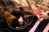 Perfect Evening (joegeraci364) Tags: adult bow cork date drink erotic evening fun glass lace leather life love night occasion pleasure ribbon romantic sensual silk still vine vino weekend wine