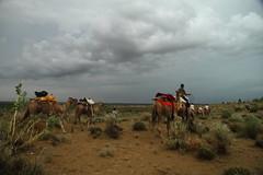 Jaisalmer. A veces llueve en el desierto (Txaro Franco) Tags: martesdenubes desierto desert basamortua camello camel india rajastán jaisalmer caravana silkroad rutadelaseda lluvia nubes clouds euria hodeiak zeria cielo sky nwn
