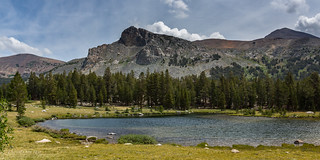 Little Lake near Tioga Pass (USA)