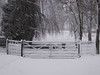 December Snow (Gilder Kate) Tags: therfield hertfordshire herts snow blizzard december 2017 fivebargate gate panasoniclumixdmctz70 panasoniclumix panasonic lumix dmctz70 tz70