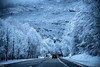 On the Road (Steff Photographie) Tags: nature neige alpes route