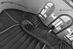 20171207 Kölh (156) Bonn R01 BN (Nikobo3) Tags: europe europa alemania renania colonia kölh architecture arquitectura escaleras travel viajes nikon nikond800 d800 nikon247028 bn bw interiores