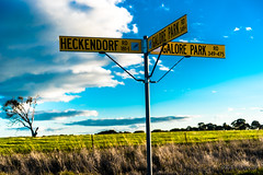 Signs and canola (Theresa Hall (teniche)) Tags: 2017 australia australia2017 canberra draytonpark nsw newsouthwales teniche theresa theresahall wagga waggawagga canolafields country countryside fence ironfence sign signage signs spring springtime nikon d750 nikond750 nikkor2485