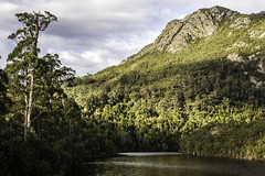 Beautiful Alpine landscape of Tasmania