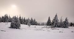 Wielka Racza w śniegu (Olgierd Pstrykotwórca) Tags: góry mountains beskidy