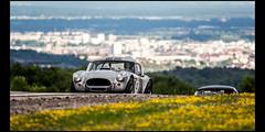 AC Cobra 289 (1962) (Laurent DUCHENE) Tags: peterauto dijonprenois 2017 sixtiesendurance motorsport car grandprixdelagedor ac cobra 289 americancar shelby