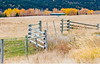 At The Post (stevenbulman44) Tags: fence canon autumn color landscape tree forest polarizer filter 70200f28l