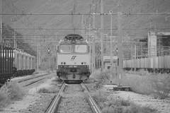 domo II set 56 #65 (train_spotting) Tags: beuracardezza domoii tigre tigrone e652063 trenitaliacargo trenitalia ticargo divisionecargo mir merciitaliarail nikond7100