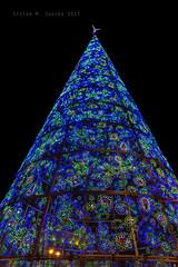 Puerta del Sol (Madrid) (Víctor M. Sastre) Tags: iluminación navidad gente people luces madrid spain españa calles street plazas squares urbano urban ciudad city noche