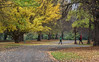 On a Cold Day in May (Jocey K) Tags: newzealand nikond750 southisland christchurch autumn christchurchbotanicgardens trees people leaves pathway