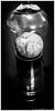Day 361. (lizzieisdizzy) Tags: blackandwhite blackwhite black bright whiteandblack white whiteblack monochrome mono monotone monochromatic chromatic glass apple fruit shadows shrivelled wrinkled wrinkly stalk flesh reflections reflection reflective reflect table tabletop upsidedown frame framed