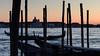 Waiting to Land (helen kay) Tags: venezia venice mood motion sea gondolas lagoon evening canon
