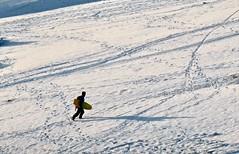 One more run (Kumukulanui) Tags: snow sledge sled hills malvernhills malverns northhill tablehill worcestershire