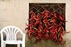 Peperoni cruschi (Itinerari Camper) Tags: viaggi camper travel itinerari italia italy basilicata food