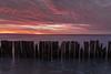 Firewood (Aaron Springer) Tags: michigan northernmichigan lakemichigan thegreatlakes lakeshore shoreline fencerow clouds water twilight outdoor landscape