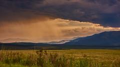 Thunderstorm (flowerikka) Tags: africa atmosphere clouds earlyevening evening eveningmood flora grass hills landscape light meadow mountain sabieriver sky southafrica storm summer thunderstorm valley view