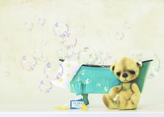 button does not like bath time (rockinmonique) Tags: 201852weekthemechallenge joy button teddybear bubbles bath rubberducky whimsical fun highkey toy mini miniature composition moniquew canont6s tamron copyright2018moniquewphotography