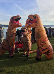 2018 YIP Day 1: Everybody is here (knoopie) Tags: 2018 january iphone picturemail 2018yip project365 365project 2018365 yiipday1 day1 dinosaurs matthewsbeach lakewashington polarbearplunge