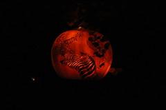 IMG_6665 (comtrag) Tags: jackolanterns rogerwilliamszoo rhodeisland halloween pumpkins pumpkincarving