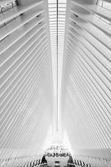 Oculus (alessioforlanoarchitetto) Tags: oculus calatrava newyork manhattan architecture architecturephotography blackandwhitephotography contemporary worldtradecenter hub subway cathedral white sony zeiss batis2818