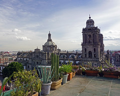 Mexico City winter vista (Francoise100) Tags: pots cactus cacti plants sky historiccentreofmexicocity imposing cupola terrasse distritofederal df metropolitancathedral unescoworldheritagesite cdmx mexico city cityscape stadt ville urban history cathedral historic unesco