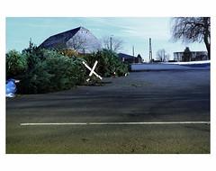 THE PARTY IS OVER # 6 (bruXella & bruXellus) Tags: christmas christmastree belgien belgique belgium belgië leicax1
