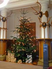Weihnachtsbaum im Jagdsaal (Sophia-Fatima) Tags: schlossludwigslust ludwigslust mecklenburgvorpommern deutschland jagdsaal weihnachtsbaum christmastree
