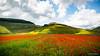 Castelluccio Di Norcia (omar.morganti) Tags: castelluccio norcia castellucciodinorcia fioritura