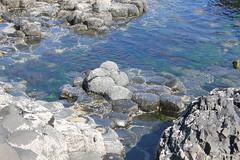 IMG_3651 (avsfan1321) Tags: ireland northernireland countyantrim unitedkingdom uk giantscauseway causewaycoast wildatlanticway basalt rock stone blackbasalt column columnarjointing columnarbasalt ocean atlanticocean landscape