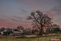 Early morning sky (GerWi) Tags: morgenhimmel himmel sky violett rosa pink rot blau sonya7 sony a7 baum landschaft landscape schollenreuth ortschaft dorf wolken clouds