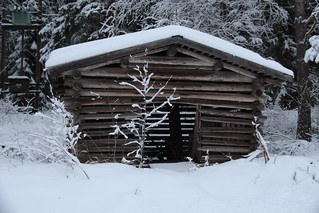 The old treeshed.