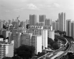 gp3_20171112-001 (JamCanSing) Tags: toyo45 blackandwhite bnw largeformat shanghai shanghaigp3 singapore